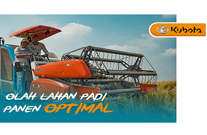 Tips Mengolah Lahan Padi Supaya Panen Optimal